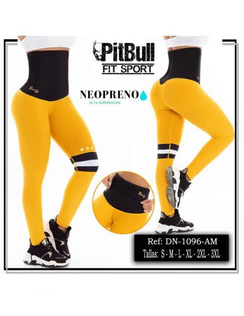 Malla Neopreno Deportivo Pitbull 1096