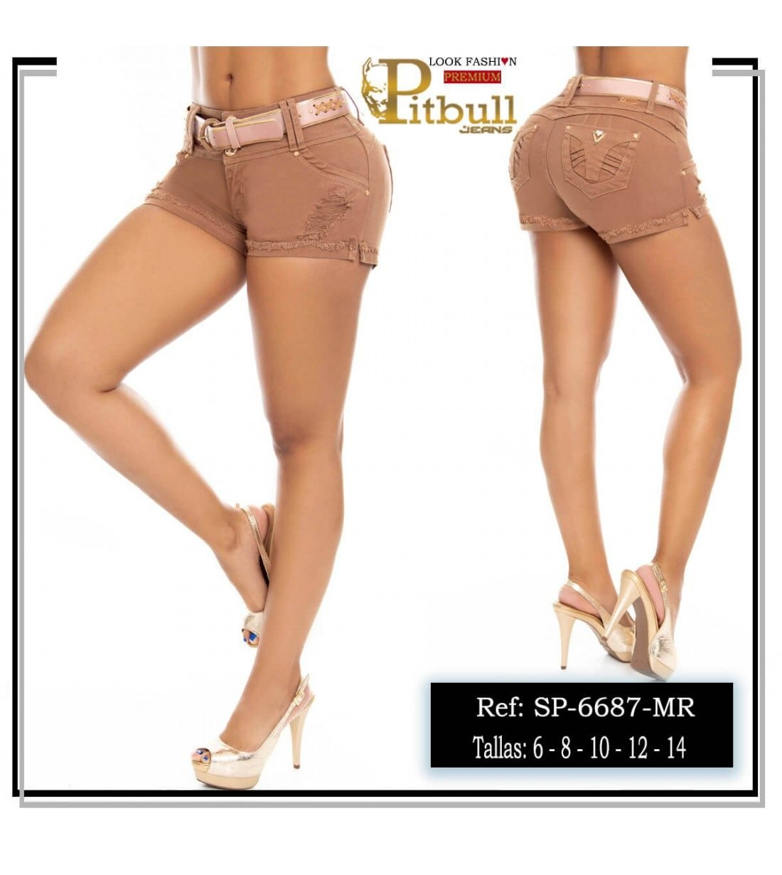 Short Colombiano Pitbull-6687